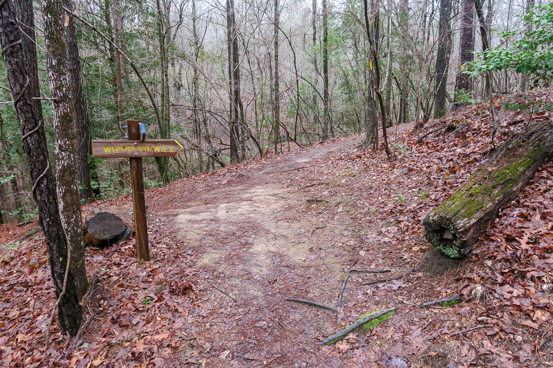 Splice/Whippoorwill Trail Junction