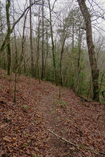 Bowline Trail