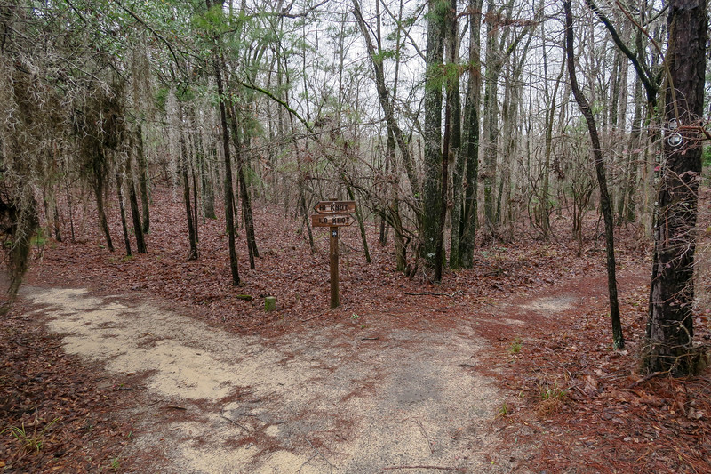 Lo Knot/High Knot Trail Junction