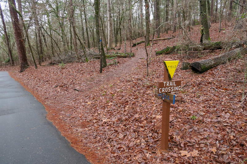 Splice Trail @ Campground Road
