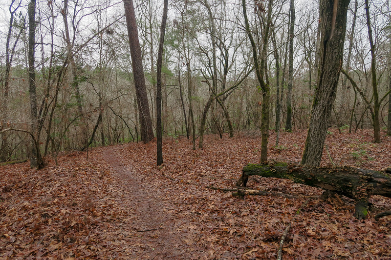 High Knot Trail