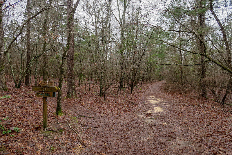 Scout Loop/Cowasee/Whippoorwill Trail Junction