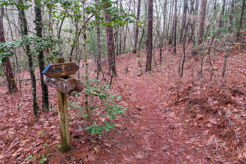 Splice Trail @ Cabin Spur
