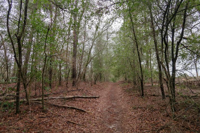 Hi Knot Trail
