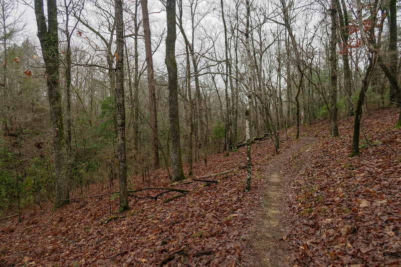 Lo Knot Trail