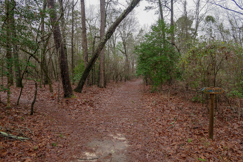 Scout Loop/Cowasee Trail Upper Middle Junction