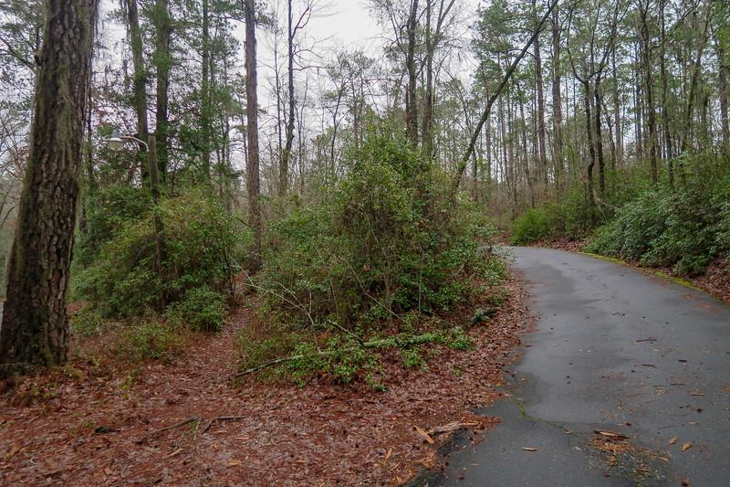 Splice Trail @ Park Road