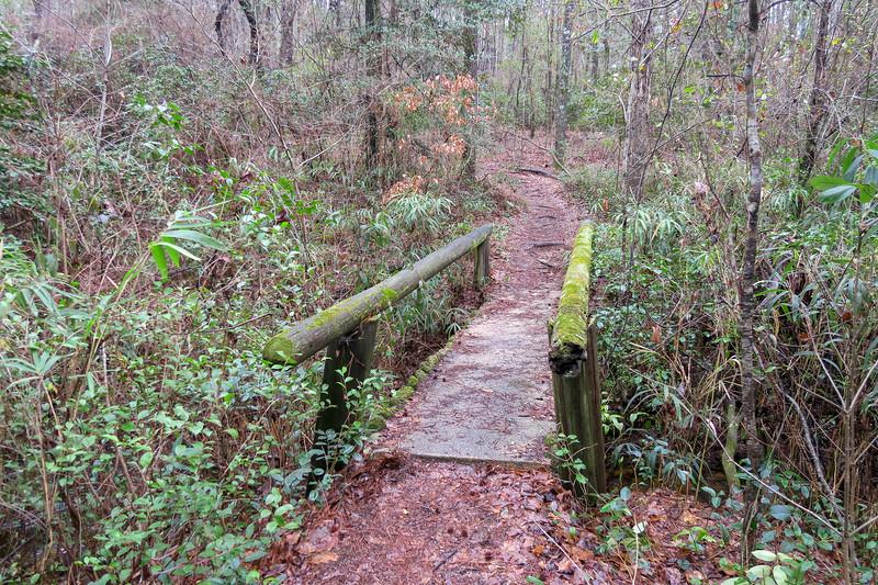 Laurel Trail
