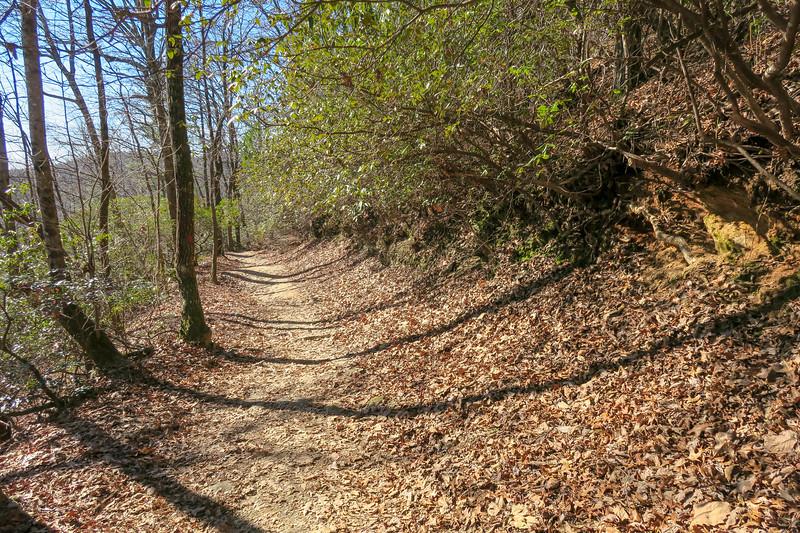 Raven Cliff Falls Trail -- 3,020'