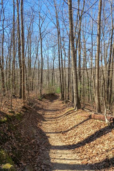 Raven Cliff Falls Trail -- 2,980'
