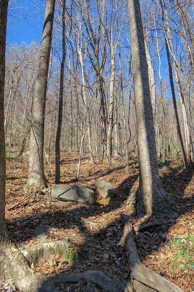 Dismal Trail -- 2,400'