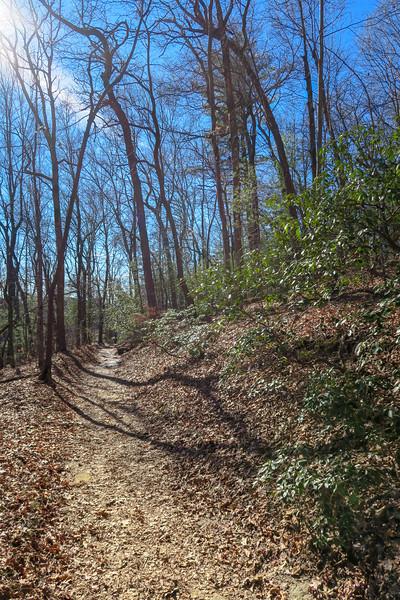 Raven Cliff Falls Trail -- 3,050'