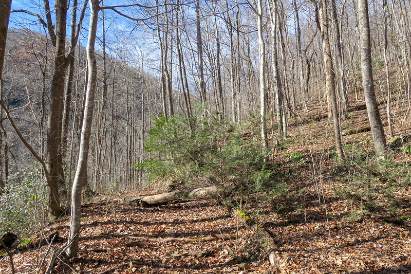 Dismal Trail -- 2,080'
