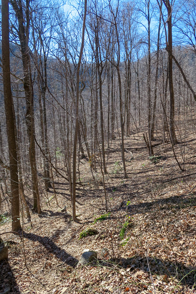 Dismal Trail -- 2,300'