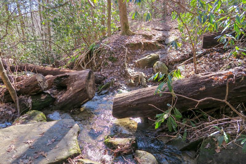 Dismal Trail -- 1,800'