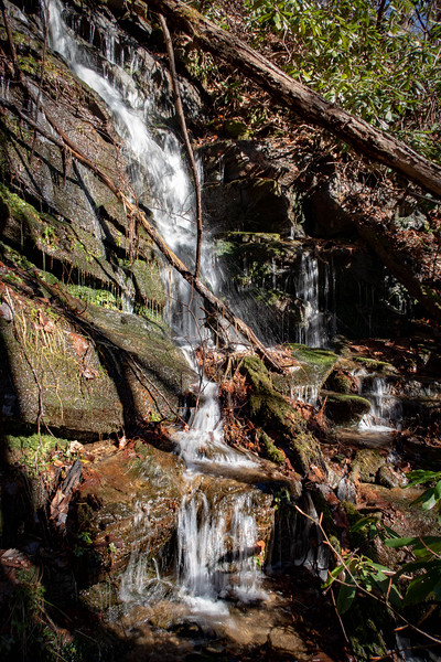 Dismal Trail -- 2,200'