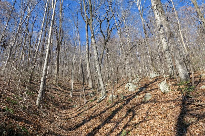 Dismal Trail -- 2,520'