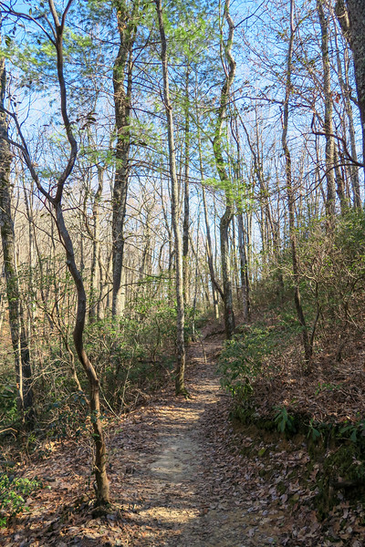 Raven Cliff Falls Trail -- 2,900'