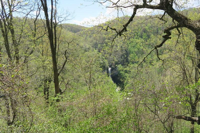 Dismal Trail - Raven Cliff Falls