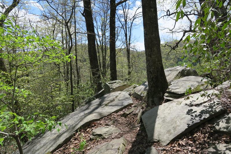 Dismal Trail