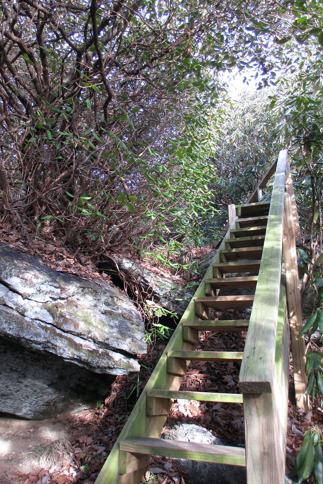Nearing the top a flight of wooden steps assists with climbing a steeper rock face...