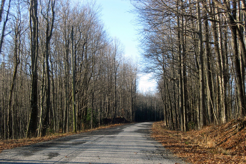 Sassafras Mountain Road