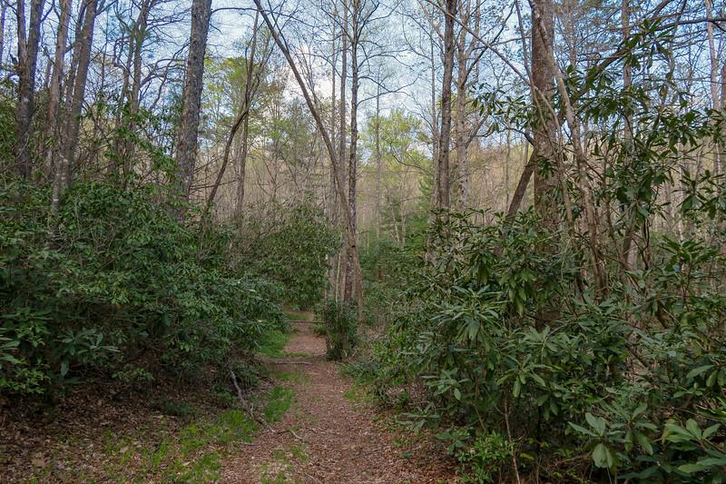 Foothills Trail Spur -- 2,800'