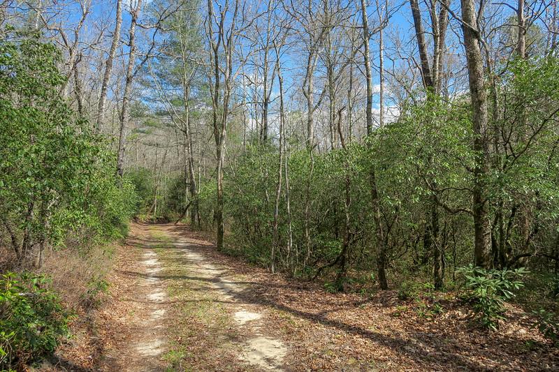Foothills Trail Spur -- 2,940'