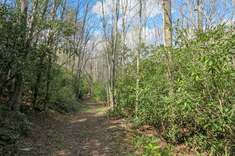 Foothills Trail Spur -- 2,880'