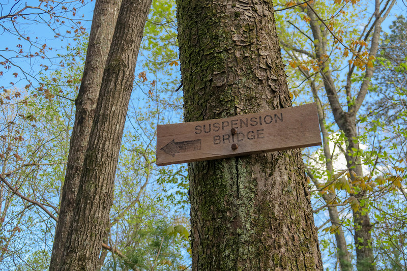 Foothills Trail Spur/Naturaland Trust Trail Junction -- 3,020'