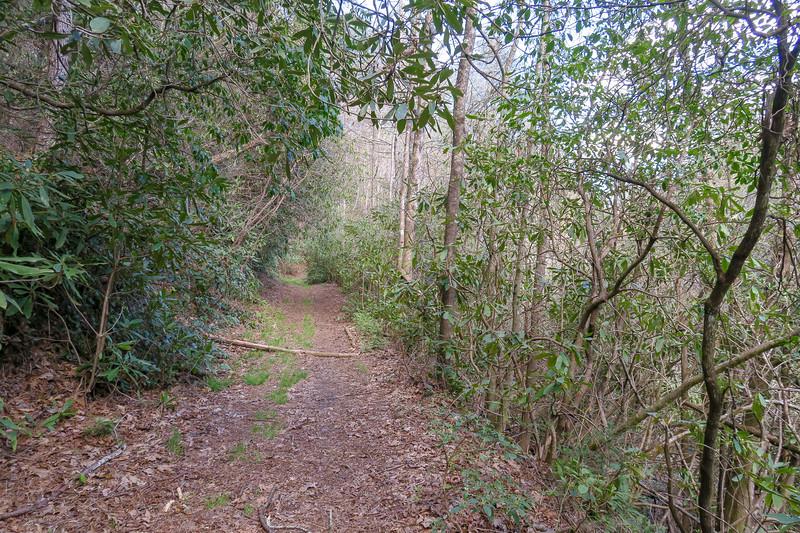 Foothills Trail Spur -- 2,820'