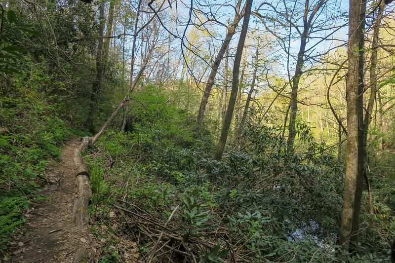Naturaland Trust Trail -- 2,720'