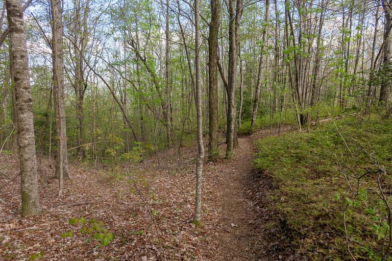 Naturaland Trust Trail -- 3,000'