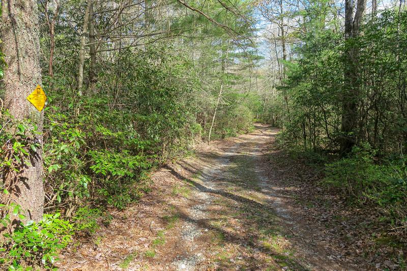 Foothills Trail Spur -- 3,040'