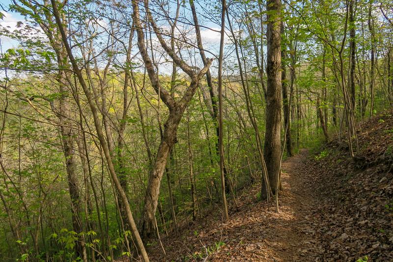 Naturaland Trust Trail -- 2,900'