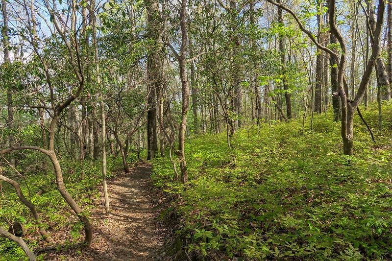 Naturaland Trust Trail -- 2,940'