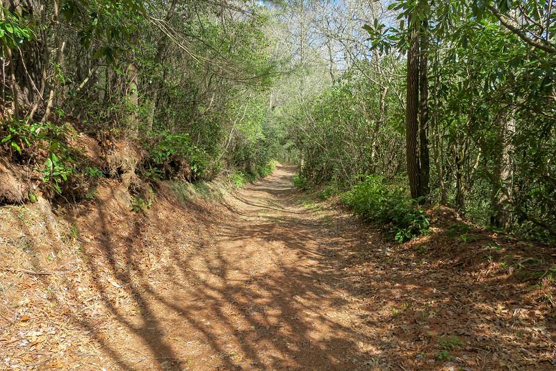 Foothills Trail Spur -- 2,920'