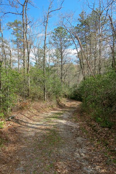 Foothills Trail Spur -- 2,980'