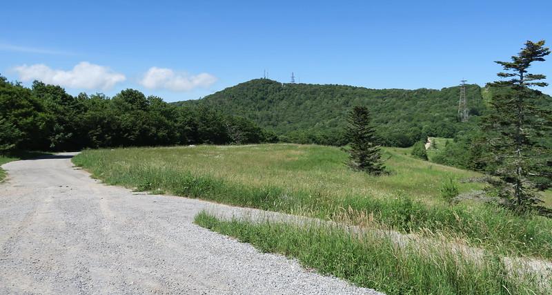 Jones Meadow Trailhead - 4,420'