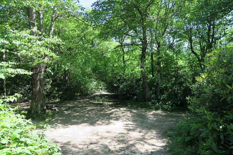 Jones Meadow-Appalachian Trail Access Path/Road - 4,480'