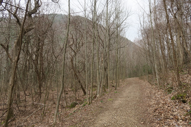 Margarette Falls Trail