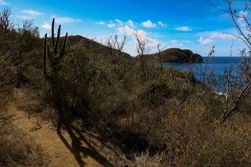 Ram Head Trail -- 50'