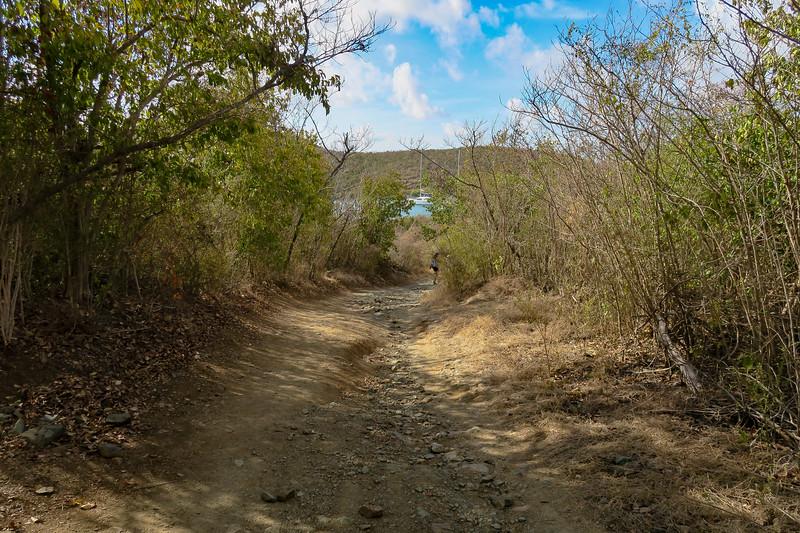 Salt Pond Trail -- 20'