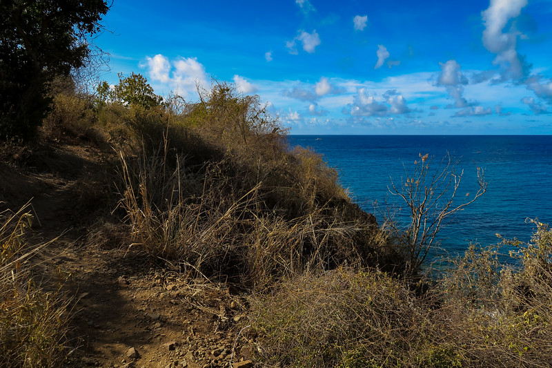 Ram Head Trail -- 30'