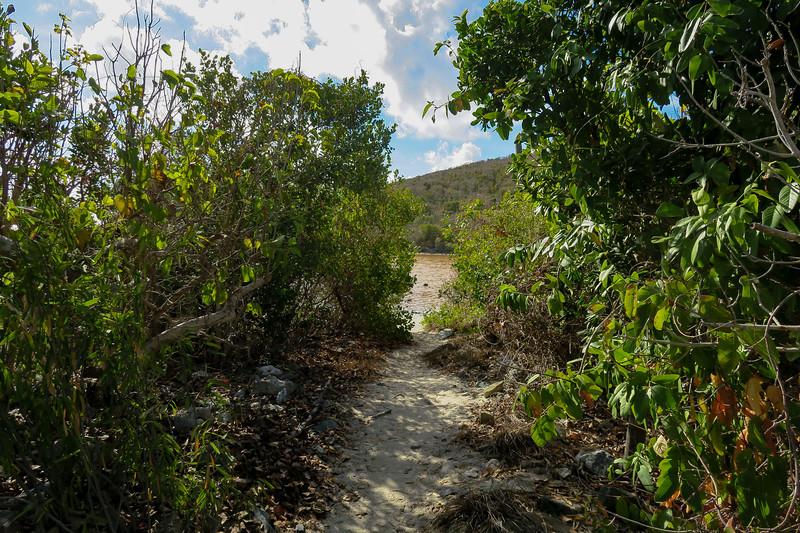 Salt Pond Trail -- 5'