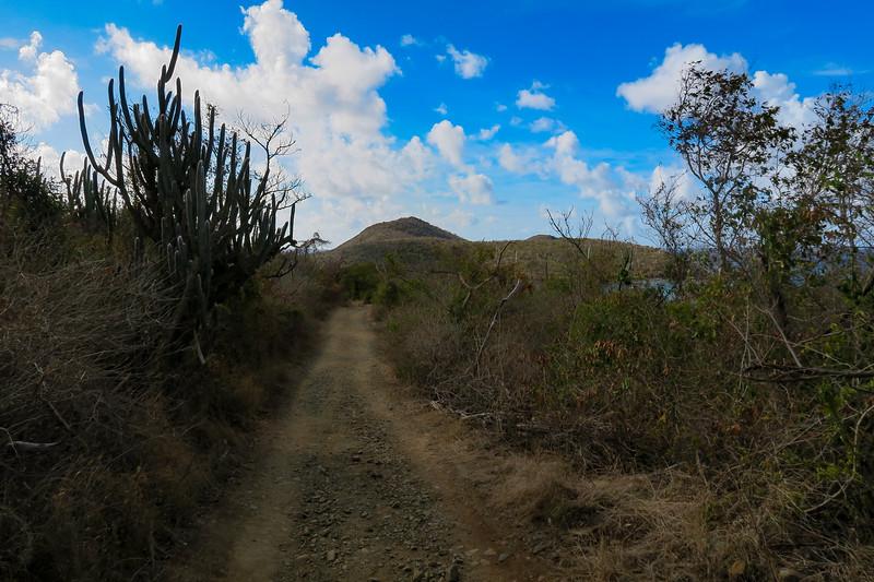 Salt Pond Trail -- 50'