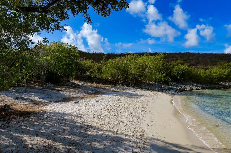 Salt Pond Trail (Salt Pond Beach) -- 0'