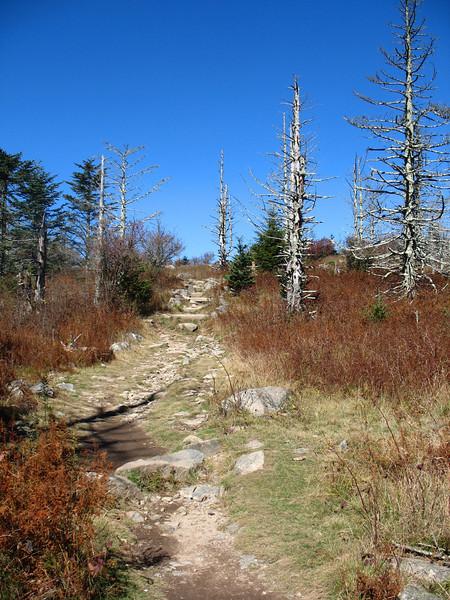 Appalachian Trail - 5,000'