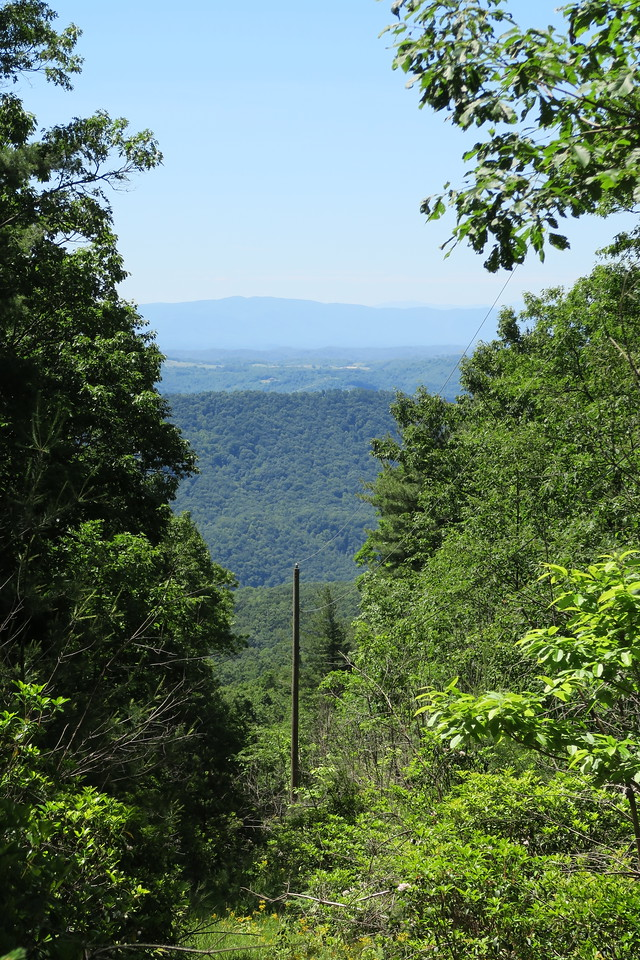 Brumley Mountain Trail/Raven Ridge Road