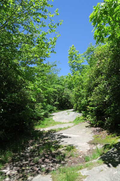 Brumley Mountain Trail
